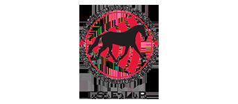 iselp-logo-banner